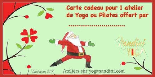 Pour découvrir le Yoga ou le Pilates, profitez des bons cadeaux de Nandini Yoga.